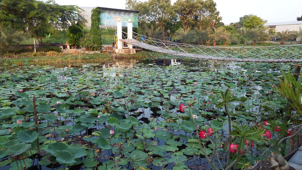 The centerpiece of Ban Ing Suan - the bridge over the pond